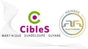 Cibles-LesAA