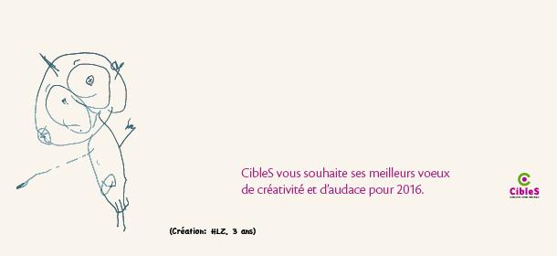 Cibles-voeux-2016-01